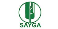Sayga